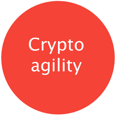 "Red round circle with text ""Crypto agility"" with pop-up including caption text on subject"